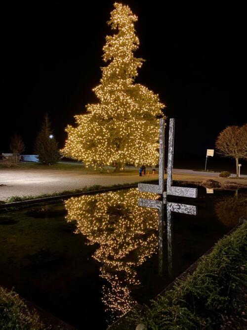 Weihnachtsbaum Bad Homburg